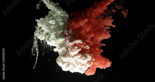 Red and white acrylic paint cloud spraying in water on black background Canvas Print