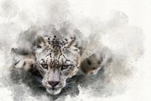 Pouncing Snow Leopard Mixed Media