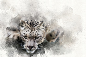 Fototapeta Pouncing snow leopard mixed media