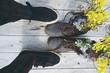 zapatos vintage y flores sobre fondo de madera