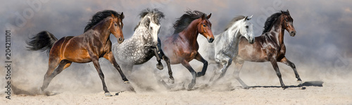Photo  Horses run fast in sand against dramatic sky