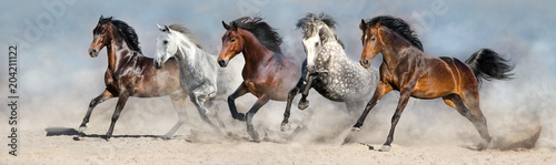 Horses run fast in sand against dramatic sky