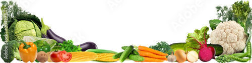 Printed kitchen splashbacks Vegetables banner with a variety of vegetables