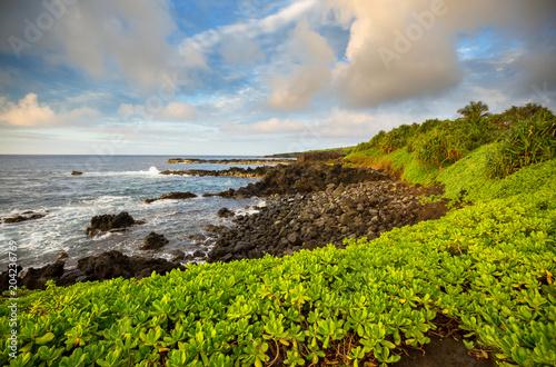 Poster Oceanië Maui