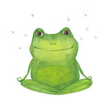 Meditating Green Frog