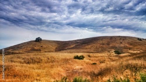 Spoed Foto op Canvas Verenigde Staten Desert
