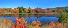 Autumn Tree Reflection In Cram...