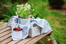 June Or July Garden Scene With...