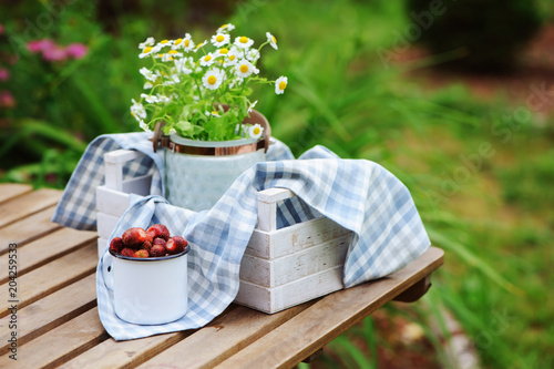 June Or July Garden Scene With Fresh Picked Organic Wild