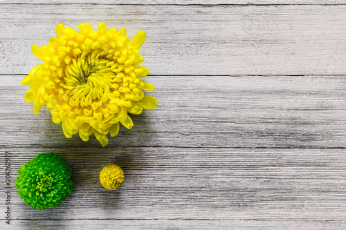 Deurstickers Narcis Chrysanthemums and Craspedia on Rustic White Table