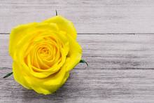 Single Yellow Rose On Rustic Table
