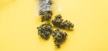 Small Business Marijuana Dispensary In Unated States.Marijuana Buds For Sale