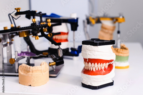 Valokuvatapetti Dental model and dental equipment on white background, concept medical image of