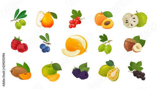 Fotografija  Fruits and berries, set of colored icons
