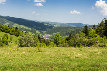 Fototapeta na wymiar Village in the valley surrounded by green forests and meadows.