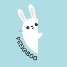 White Bunny Rabbit Holding Wal...