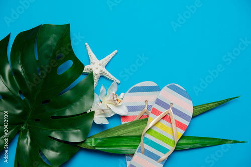 Papiers peints Pays d Afrique palm leaf with flower and flip flops. Objects isolated on blue background