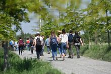 Jeunes Ecole Excursion Educati...