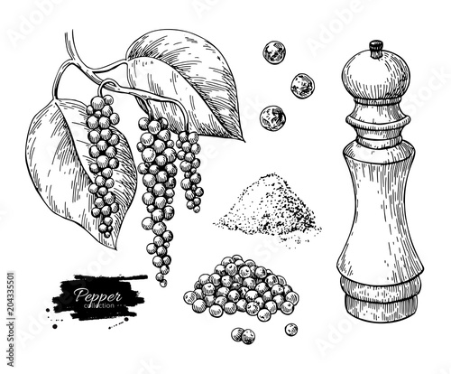 Black pepper vector drawing set. Peppercorn heap, mill, dryed seed, plant, grounded powder. Fototapete