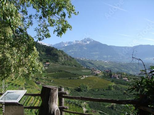 Keuken foto achterwand Khaki Südtirol Gebirge Berge