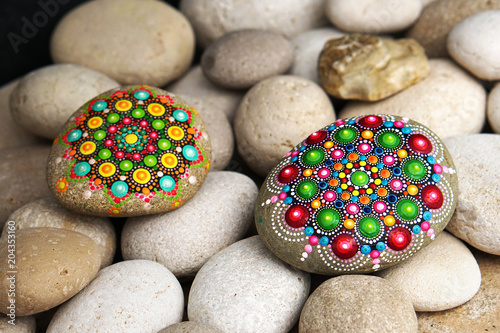 Beautiful hand painted mandala rocks Tablou Canvas