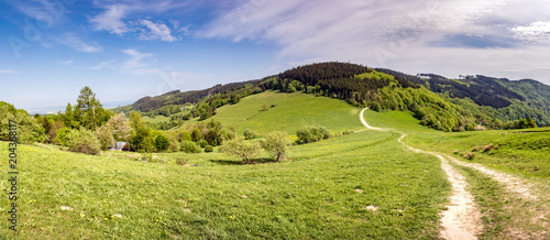 Foto op Canvas Pistache Panoramic view of spring landscape with dirt road