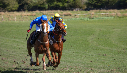 two galloping race horses competing in a racing competition