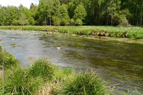 Fotografia, Obraz  Die Pfreimd ist ein Fluss in der Oberpfalz.