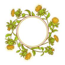 Safflower Plant Vector Frame