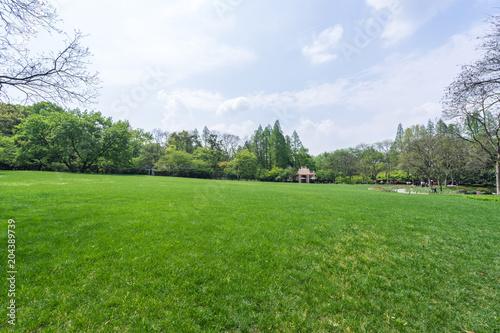 Tuinposter Blauwe hemel green lawn with modern office building