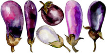 Eggplant Healthy Food In A Wat...