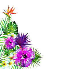 beautiful violet flowers ,palm leaves, watercolor on a violet