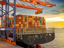 The Container Vessel  During D...
