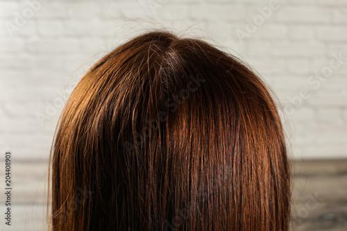 Photo Detail on natural dark brown woman hair see from behind.