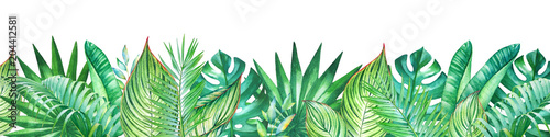 Photo  Background with watercolor tropical plants
