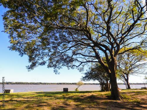 Fototapety, obrazy: Park by the Uruguay river in Sao Marcos village (Uruguaiana, Brazil)
