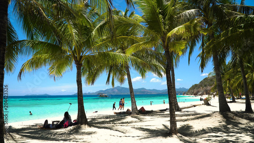 Staande foto Tropical strand Tropical beach on the island Malcapuya, Palawan, Philippines. Beautiful tropical island with sand beach, palm trees. Tropical landscape: beach with palm trees. Seascape: Ocean, sky, sea. Travel