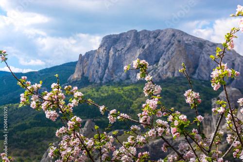 Tuinposter Blauwe hemel Mountain landscape