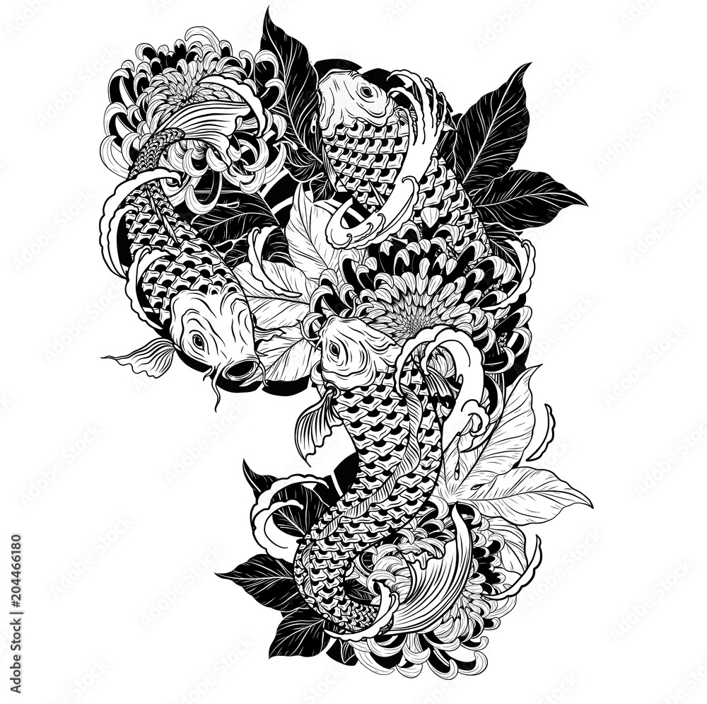 Fototapeta Carp fish and chrysanthemum tattoo by hand drawing.Tattoo art highly detailed in line art style.