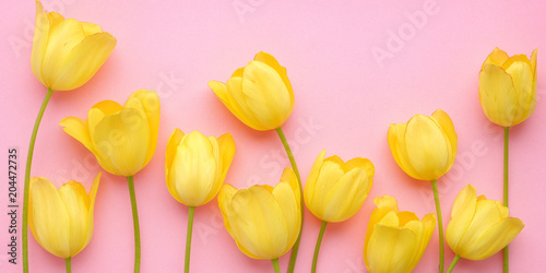 Staande foto Tulp Yellow tulip flowers on a pink background, top view, flat layout. concept summer, spring, holiday March 8, mother's day.