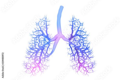 Obraz Human lungs anatomy - fototapety do salonu