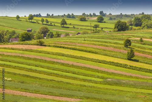 Türaufkleber Pistazie Patterned landscape organic farm near Roztocze National Park, Poland.