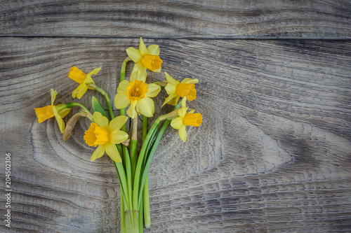 In de dag Narcis Daffodils on wooden background, copy space. Top view.