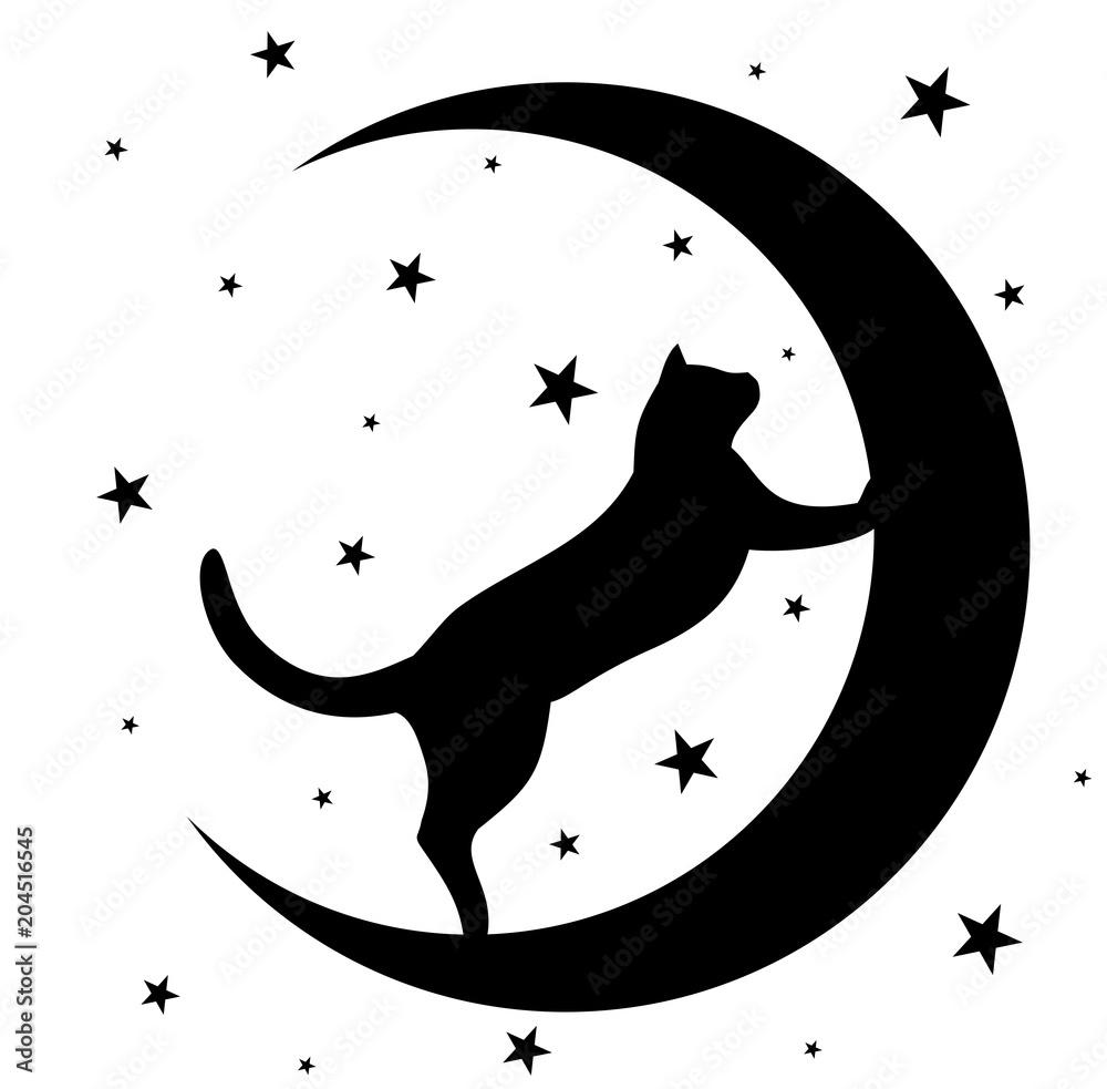 Fototapeta Black cat with moon.