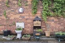 Toilet Garden Planter Against A Brick Wall In England