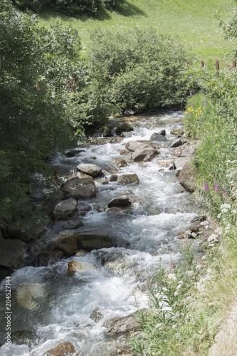 Staande foto Rivier fiume Isarco