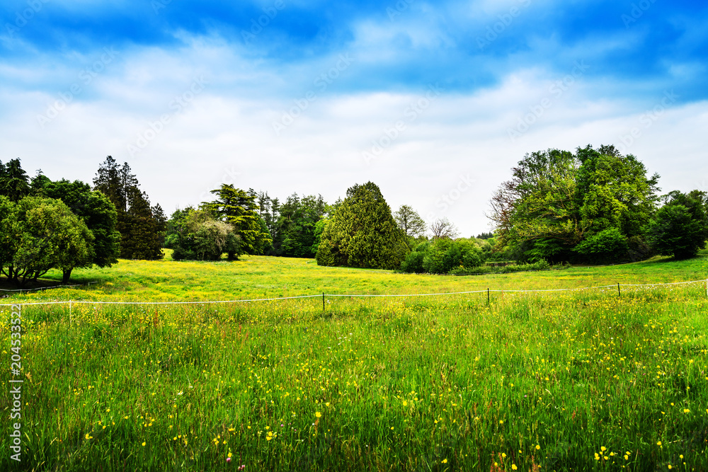 Fototapeta French landscape Haute-Vienne Limousin,France