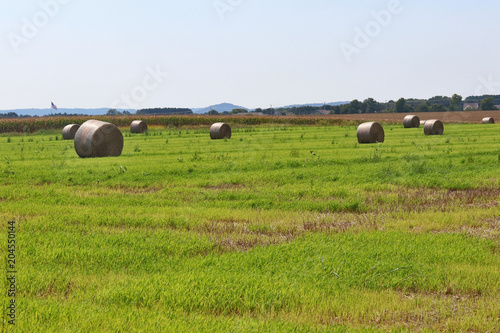 Foto op Canvas Pistache The field with bales of haystacks. Rural landscape with cloudy blue sky over the field full of rolled hay bales. Agriculture and farming background. Midwest USA, Wisconsin, Madison area.