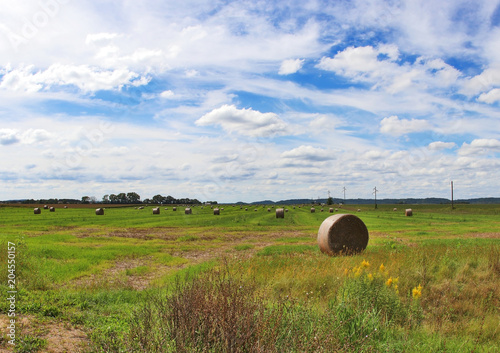 Foto op Canvas Blauwe hemel The field with bales of haystacks. Rural landscape with cloudy blue sky over the field full of rolled hay bales. Agriculture and farming background. Midwest USA, Wisconsin, Madison area.