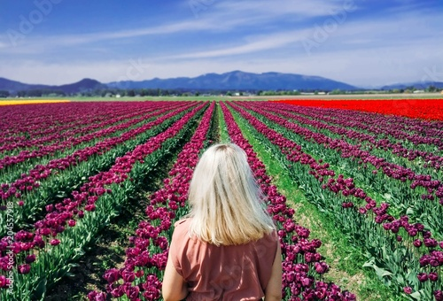 Fotografia, Obraz  Girl traveler walks the field of tulips in the Netherlands.